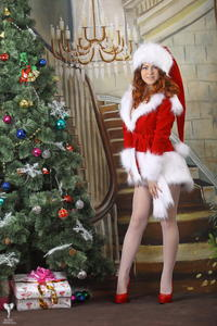 http://img263.imagevenue.com/loc547/th_531068418_silver_angels_Sandrinya_I_Christmas_1_017_123_547lo.jpg