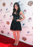 http://img263.imagevenue.com/loc581/th_41531_Lucy_Hale_13th_lili_claire_foundation_party_016_122_581lo.jpg